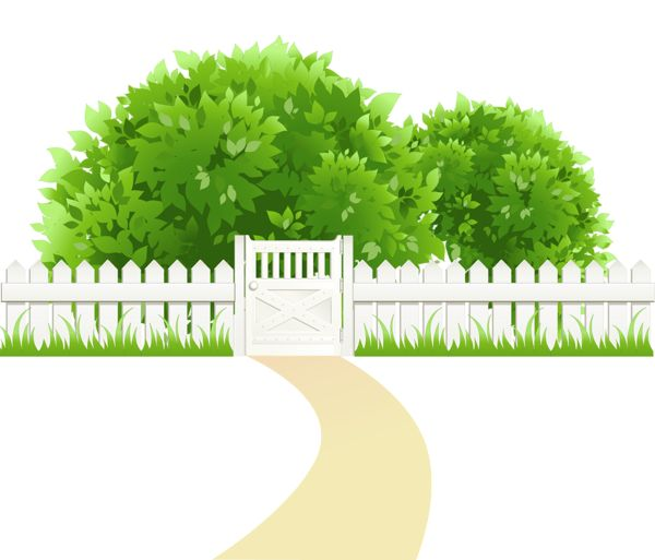 116 Best images about ต้นไม้ ใบหญ้า on Pinterest.