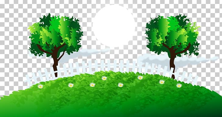 Green Tree Grass Lawn PNG, Clipart, Biome, Christmas Tree.