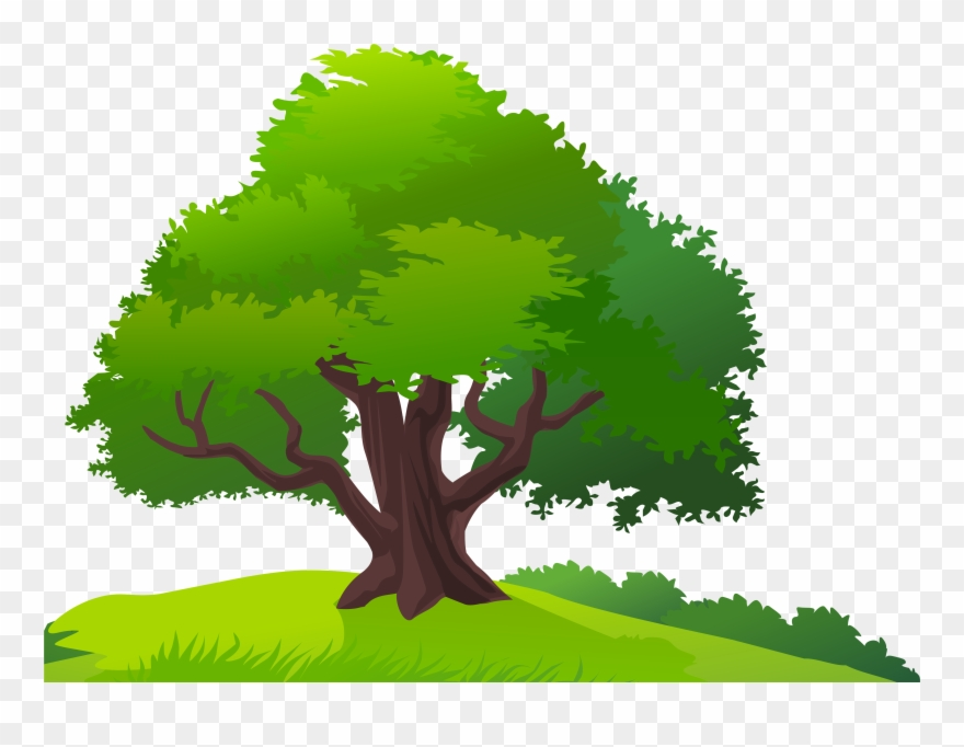 Tree And Grass Png Clipart Image.