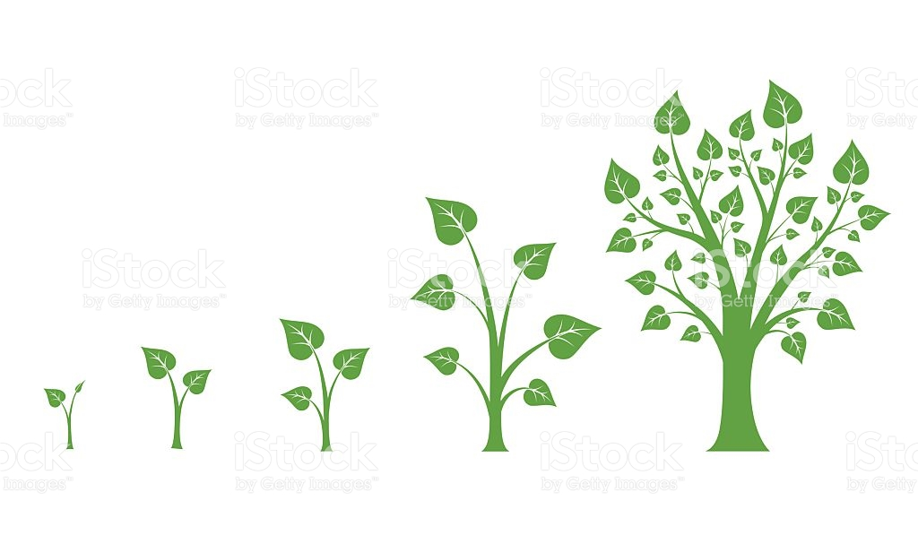 Tree Growth Clipart.