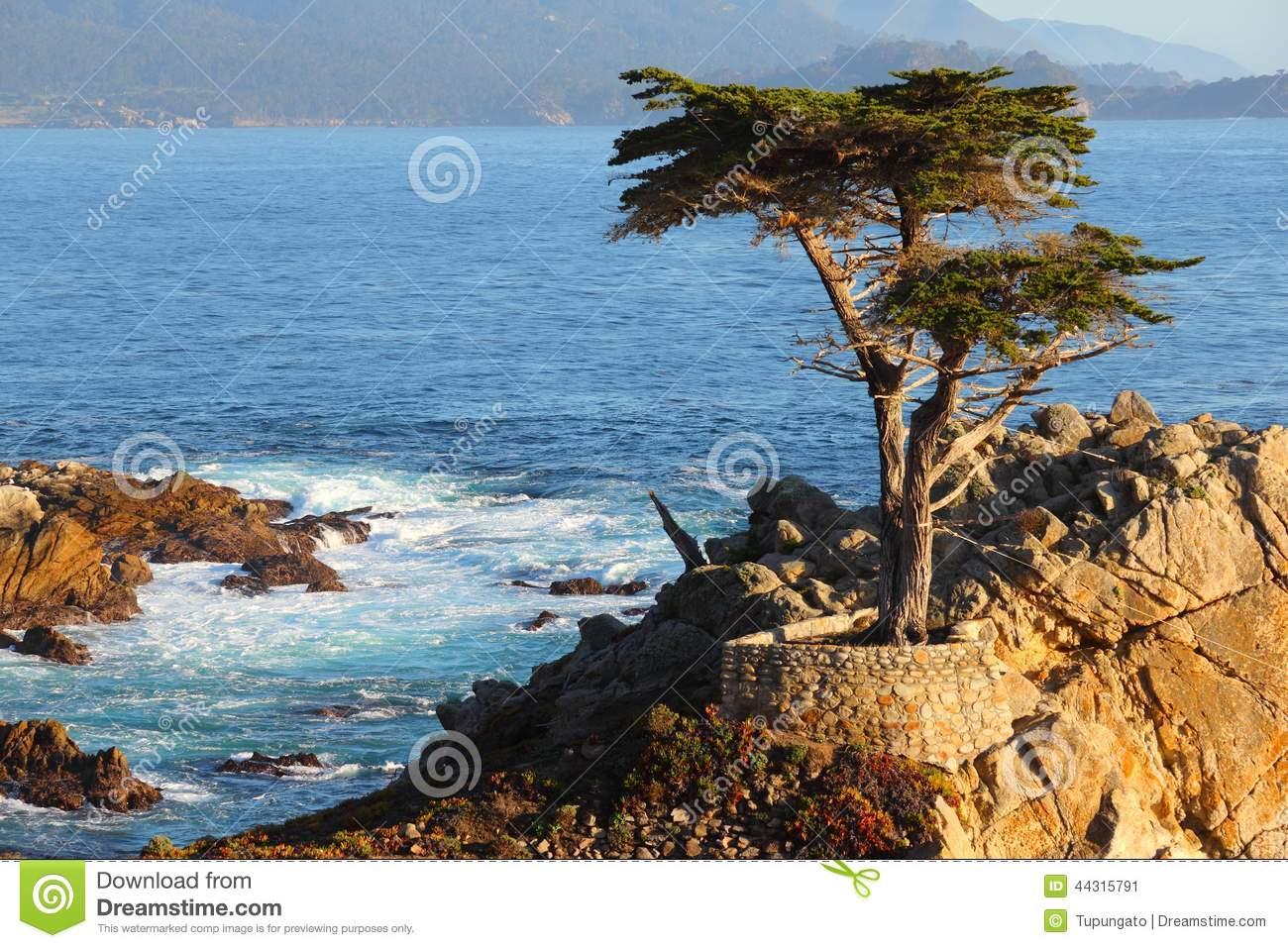 California Coast Editorial Photo.