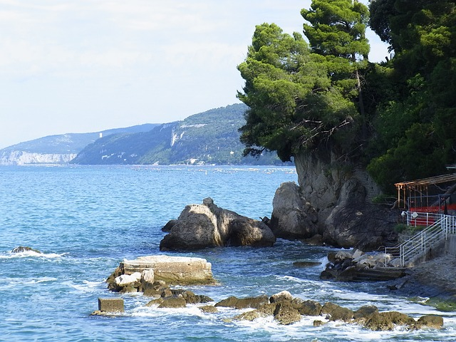 sea, rock, see, water, surface, nature, outlook, trees.