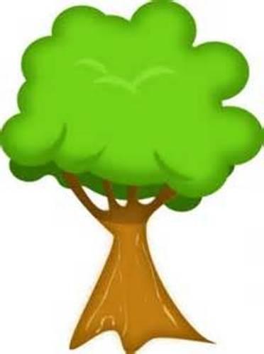 Photo Clip Tree.