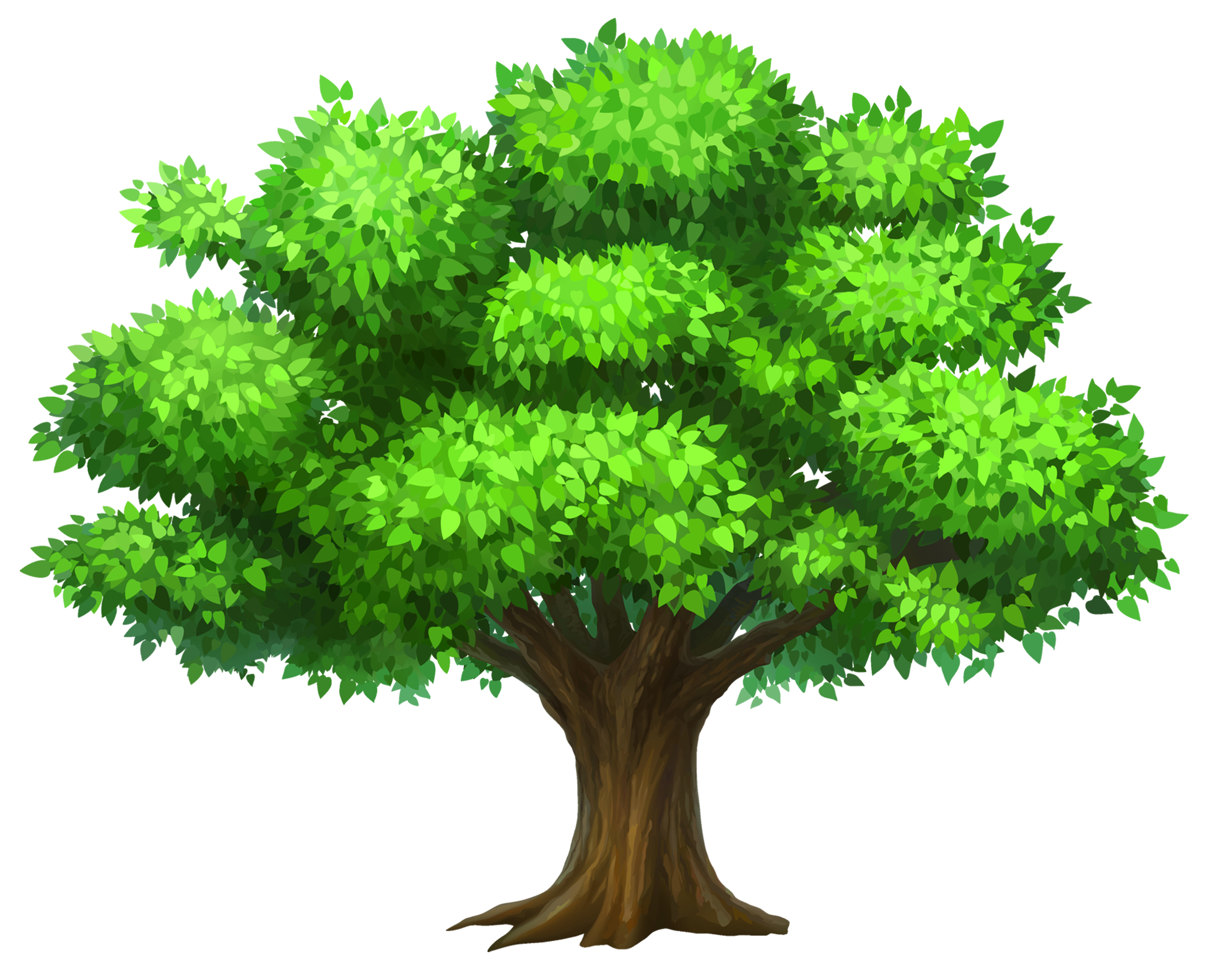 High resolution oak tree clipart.