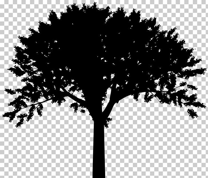 Bible Fruit Raintree Guest House Farm Logo, Tree Silhouette.