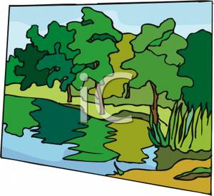 Trees_reflecting_off_the_water_in_a_pond_101104.