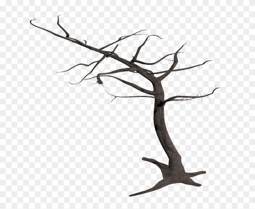 Dead Tree In Wind.
