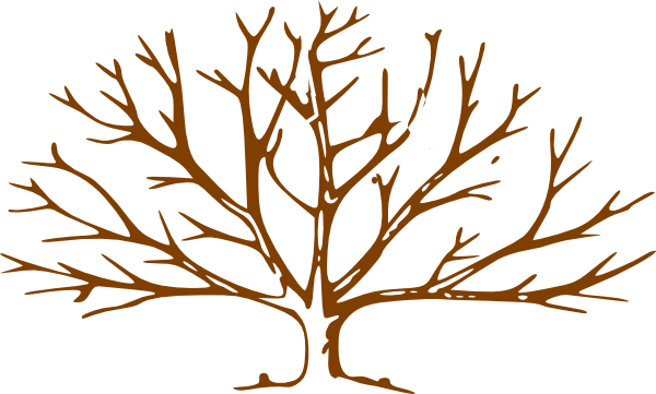 Tree Without Leaves Clipart.