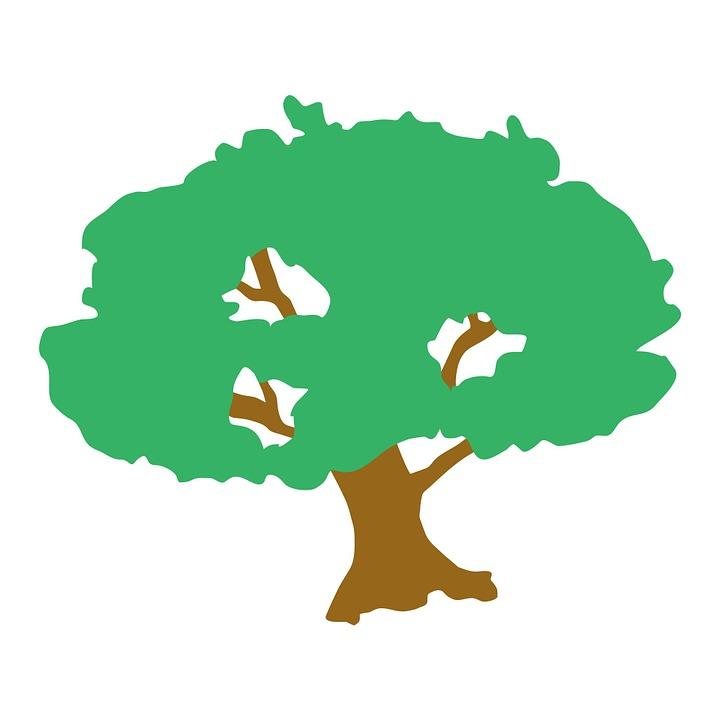 Free illustration: Tree, Clip.