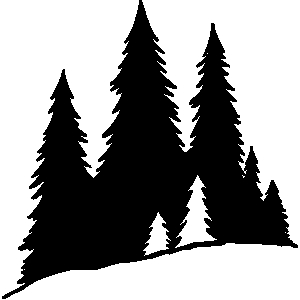 Pine tree woods clipart black and white.