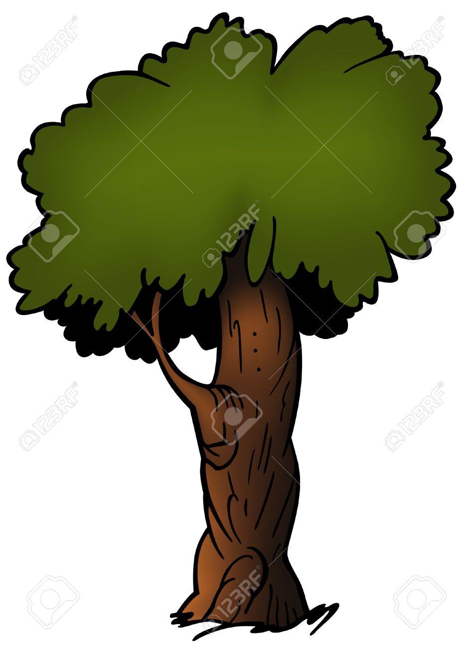 Tree 12.