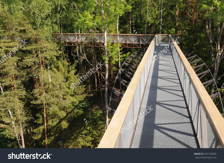 Anyksciai Lithuania May 24 2016 Treetop Stock Photo 427139206.