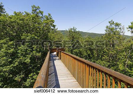 Stock Photo of Austria, Burgenland, Geschriebenstein nature park.