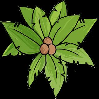 Palm Tree Treetops Clipart.