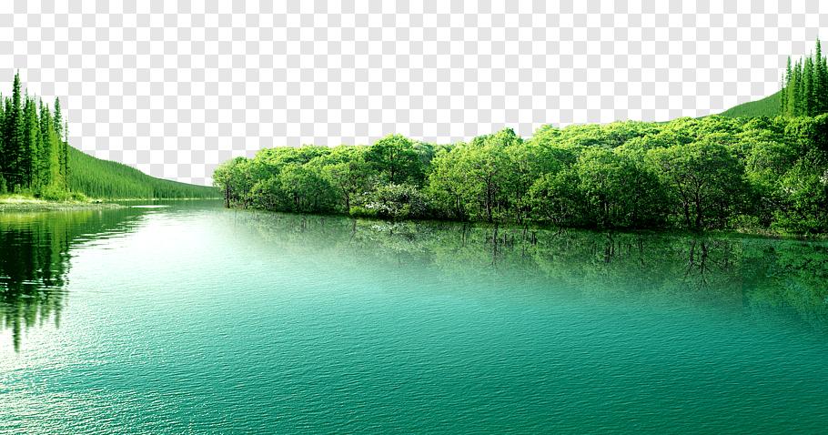 Lake and tall trees, Lake Beautiful Blue Lake, Blue lake.