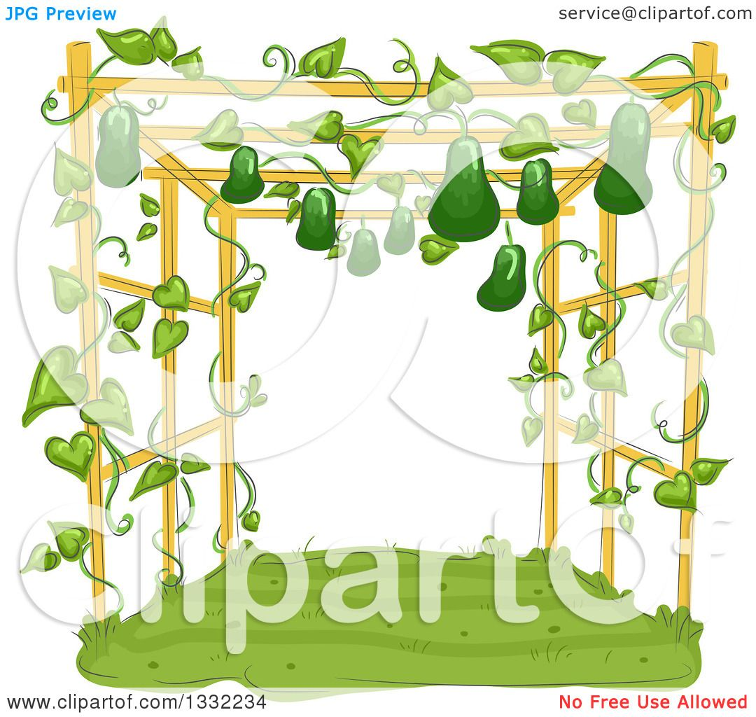 Showing post & media for Cartoon trellis clipart.
