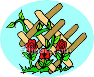 Roses_Growing_Up_a_Trellis_Royalty_Free_Clipart_Picture_090419.