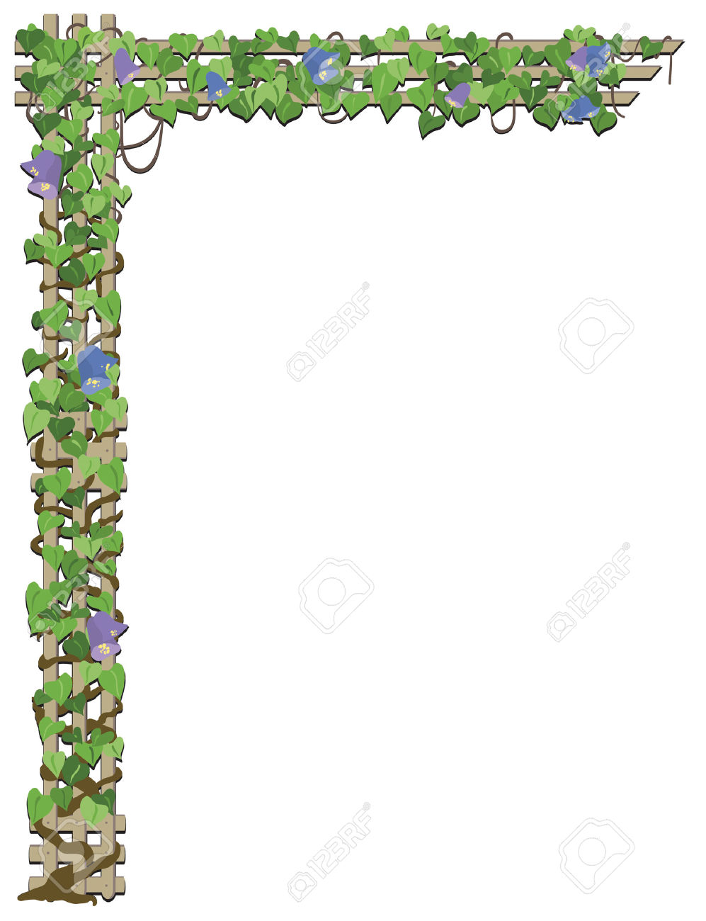 Flower Vine Growing On Treliis Royalty Free Cliparts, Vectors, And.