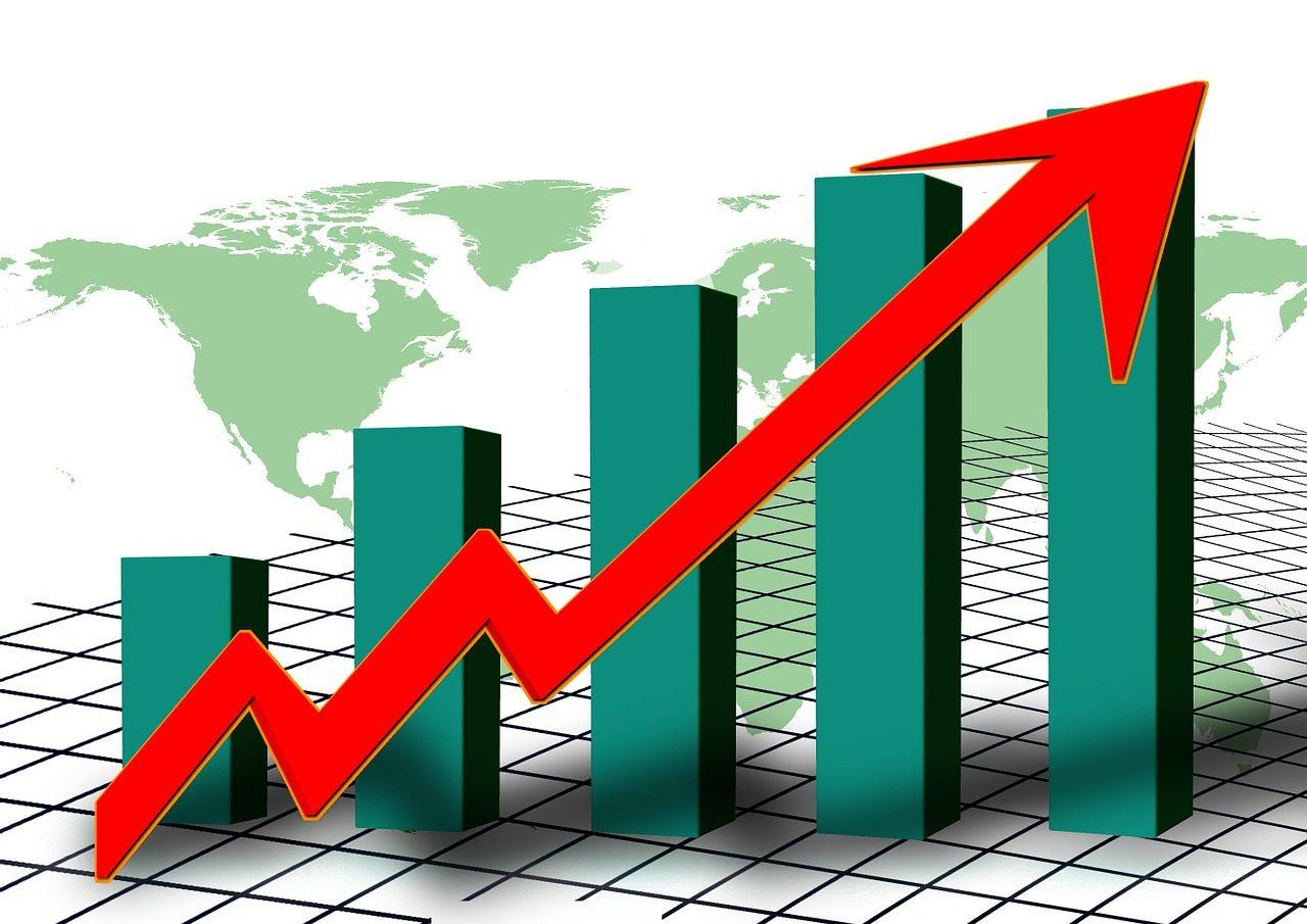Financial Ratios Analysis.