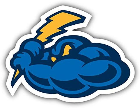 Amazon.com: Trenton Thunder MiLB Baseball USA Sport Logo Art.