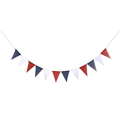 Amazon.com: BESTOYARD 3M National Day Bunting Banner.