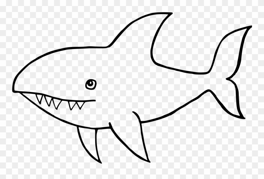 Great White Shark Drawing.