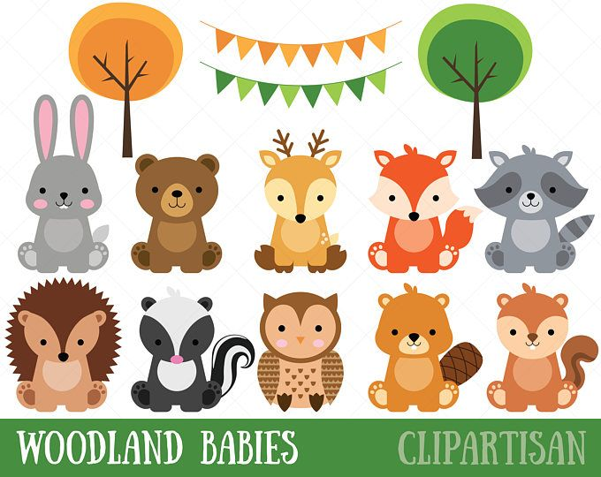 Woodland Friends 2. Watercolor animals clipart, forest, deer.