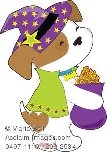 Cute Puppy Trick.