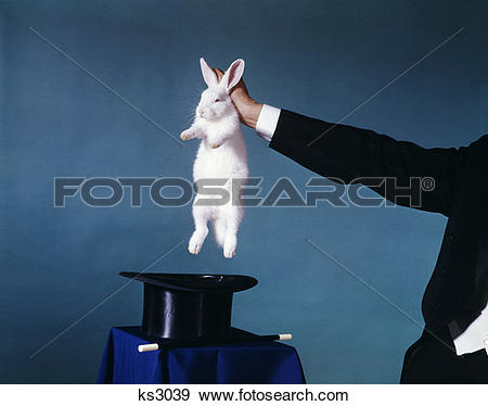 Stock Photograph of Hand Of Magician Pulling White Rabbit Out Of.