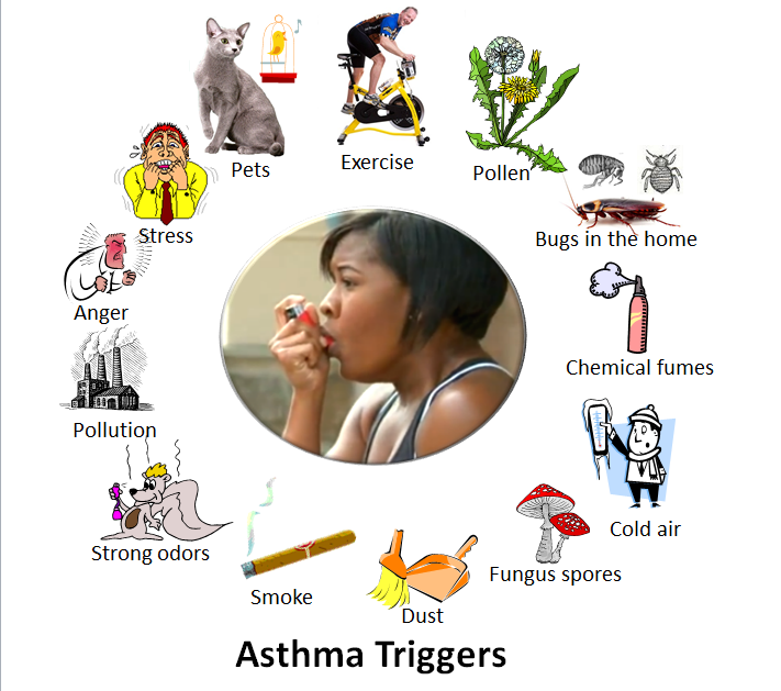 Asthma Trigger Clipart.