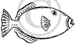 Triggerfish Clipart.