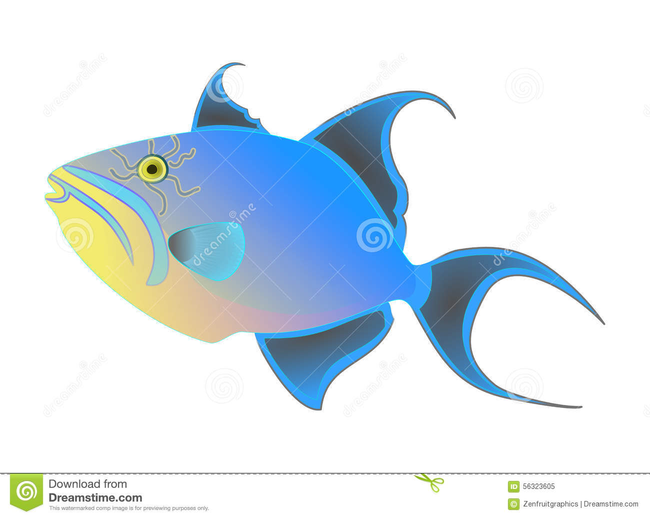 Queen Triggerfish Vector. Colorful Exotic Tropical Fish Isolated.
