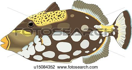 Clipart of Triggerfish u15084352.
