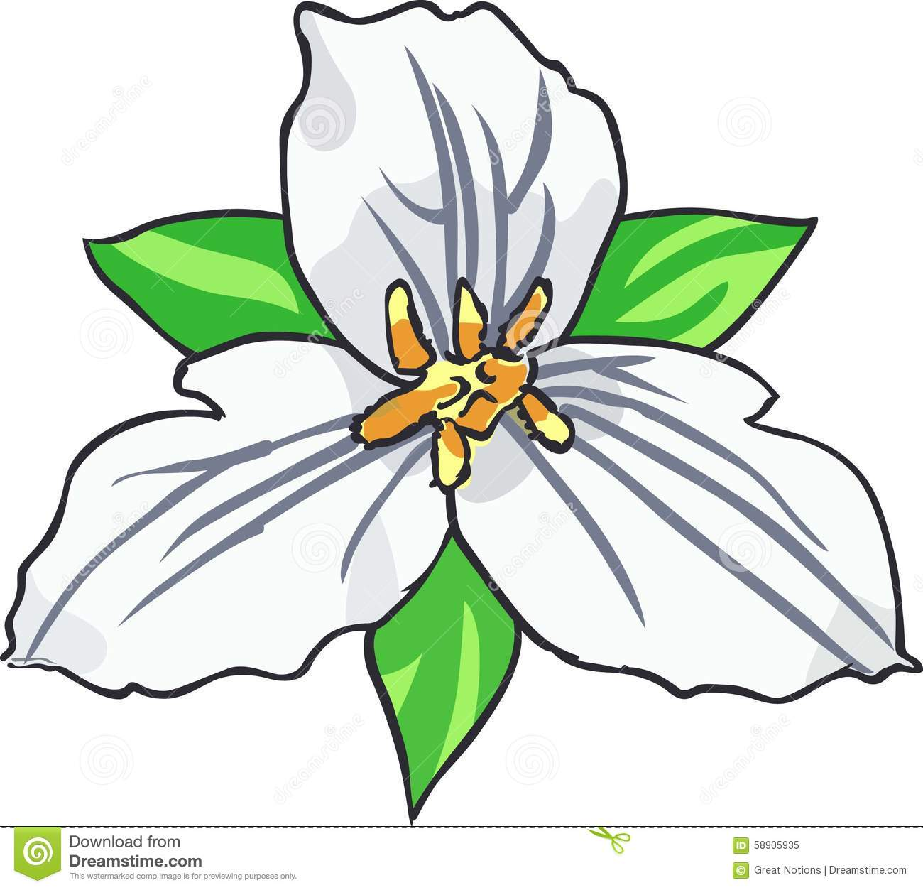 Trillium Flower Clipart.
