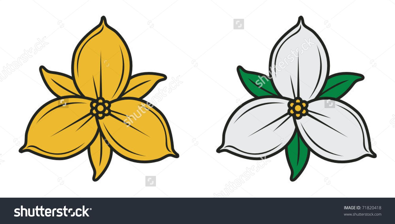 Trillium Flower Stock Vectors & Vector Clip Art.