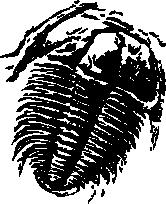 Trilobite Silhouette.