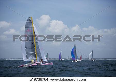 Stock Photo of post start race trimaran sailboats breathing.