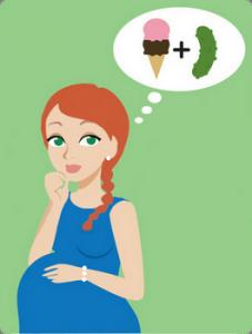 Pregnancy Trimesters Clip Art.