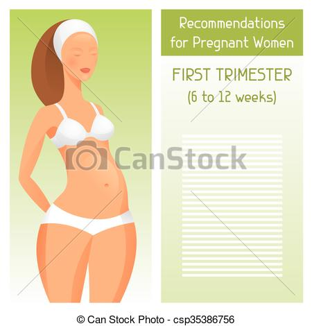 First trimester Vector Clip Art EPS Images. 18 First trimester.