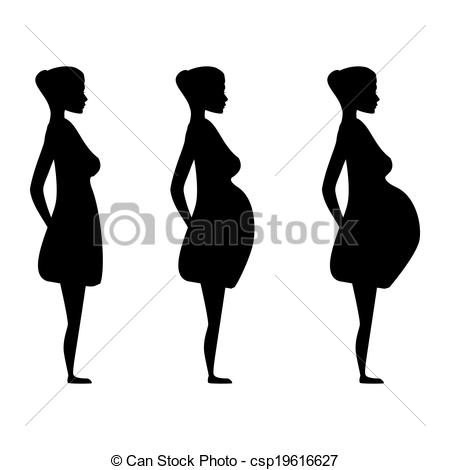 Vector Illustration of pregnant women in the three trimesters.