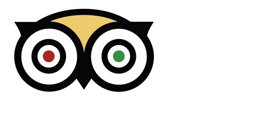 TripAdvisor and other reviews, friends or foe?.