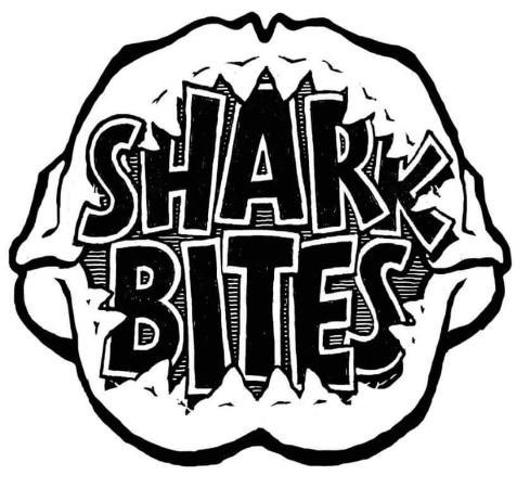 Sharkbites, Gili Air.