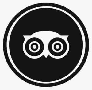 Tripadvisor Logo PNG Images.