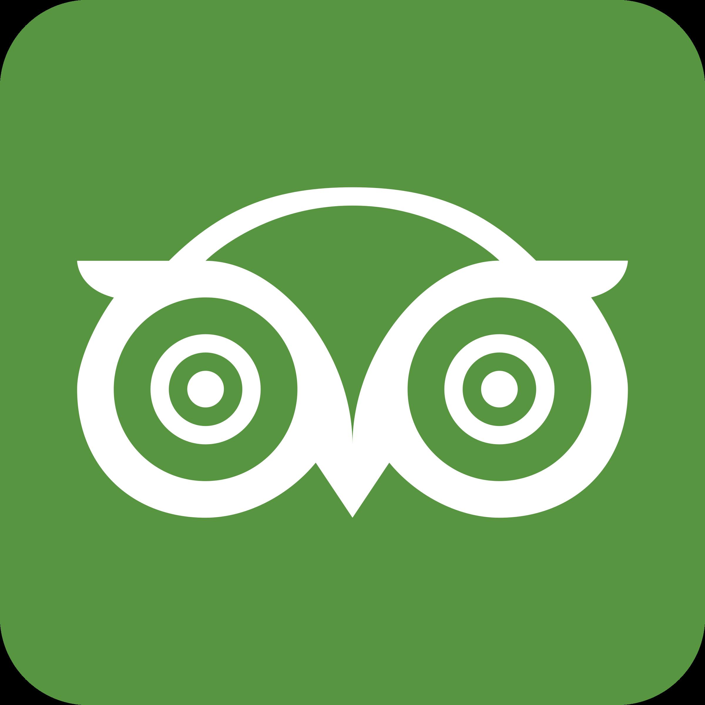 Tripadvisor Logo PNG Transparent & SVG Vector.