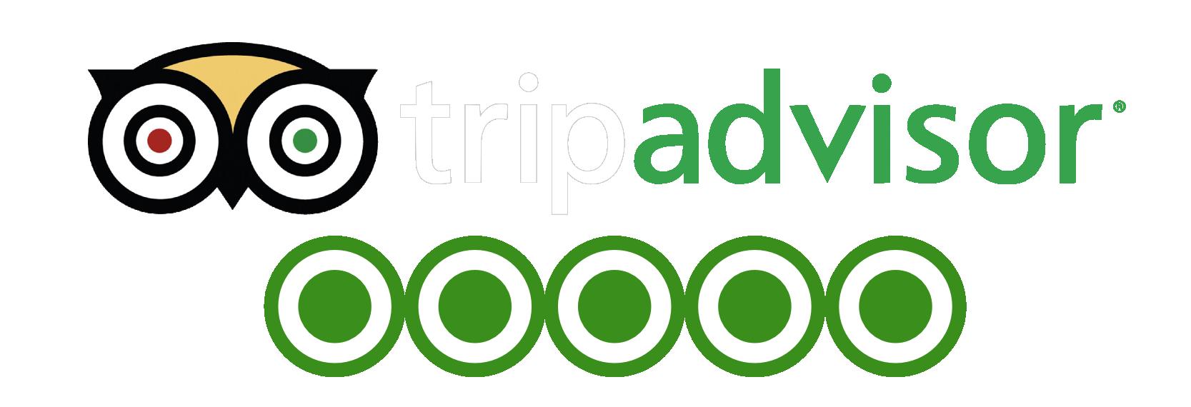 Tripadvisor Logo Png.