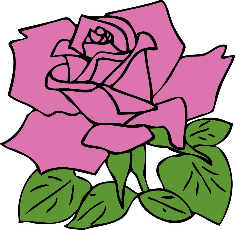 Cartoon Rose Images.