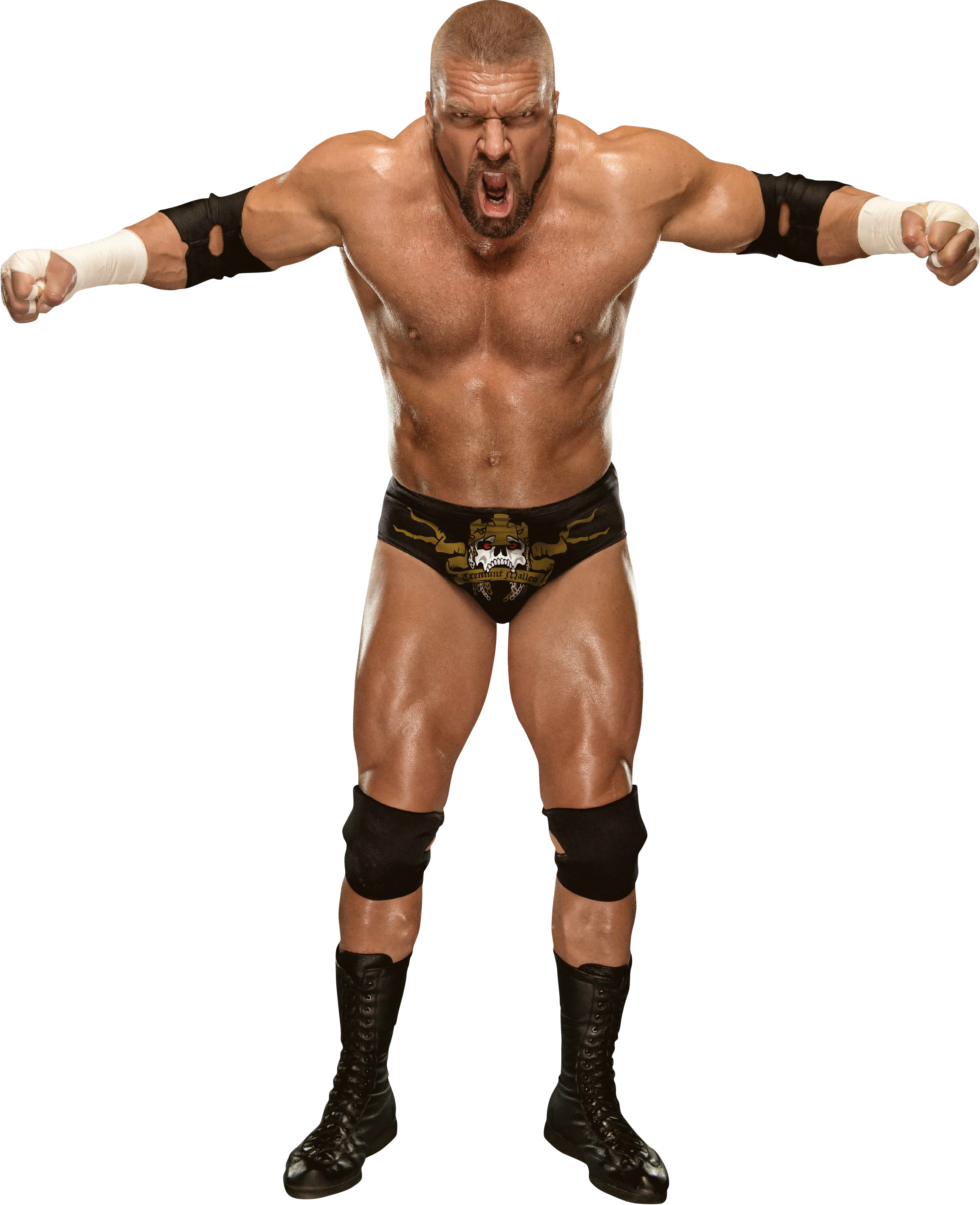 Triple H PNG Images Transparent Free Download.