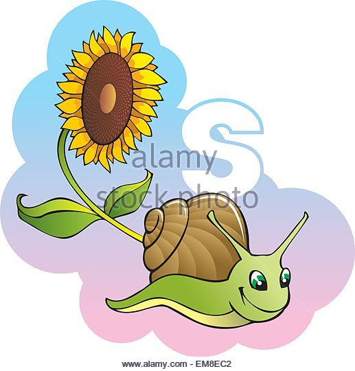 Snail S Stock Photos & Snail S Stock Images.