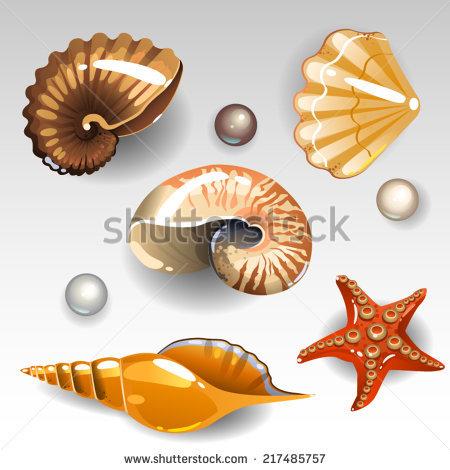 Triton Snail Stock Photos, Royalty.