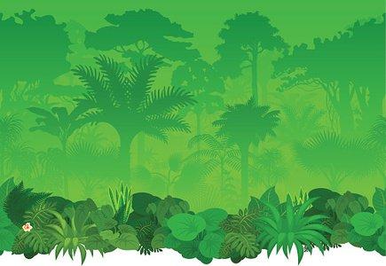 Vector seamless tropical rainforest Jungle background.